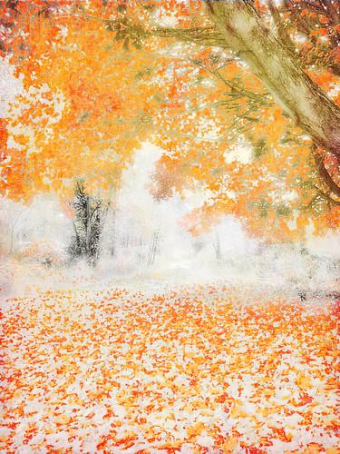 ny fall photoshop layers hudsonrivervalley