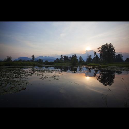sunrise landscape dawn pond july explore lilypads frontpage mapleridge goldenears jerrysulinapark alouetteriver canonef1740mmf40lusm kvdl