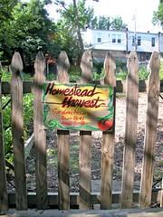 Homestead Harvest