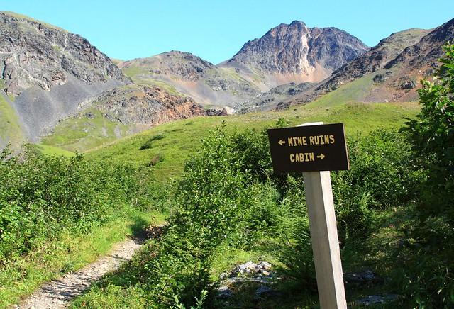 Trail junction - go left, go straight up, go right, take the long switchbacks