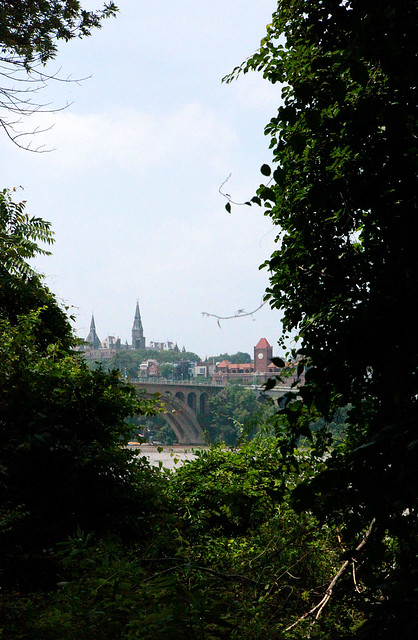 Georgetown through the trees
