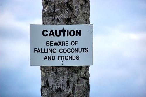 ocean sunset sign hawaii photo bigisland hilo placard warningsign coconutisland