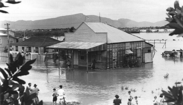 Flooded shop and houses at Townsville, 1946