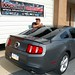 Ford Mustang 2010 Window TInt