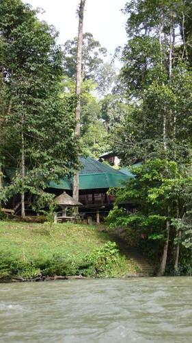 Wed, 03/12/2008 - 15:18 - Ulu Temburong National Park Credit: CTFS