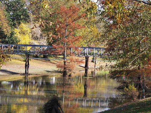 park travel bridge trees usa reflection green nature water canon mississippi leland landscapes daylight leaf scenery view state south peaceful powershot daytime tranquil sx10is waltphotos