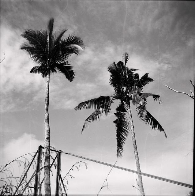 East Coast of Malaysia In Medium Format VII