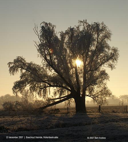 Boechout-Vremde, Molenbeekvallei, winterbeeld