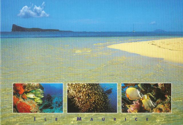 Ile Maurice-Mauritius Postcard