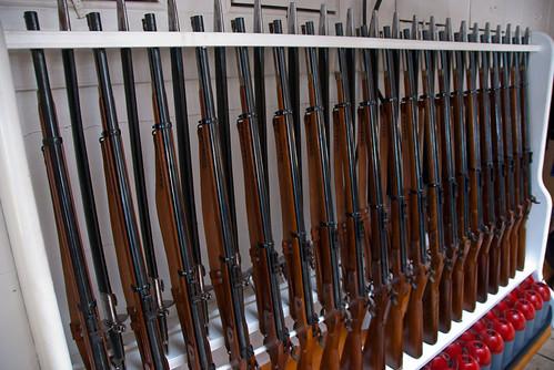 Gun Collection | by david.nikonvscanon