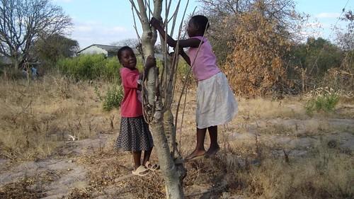 Neighborhood Scenes   by KARIMU TANZANIA