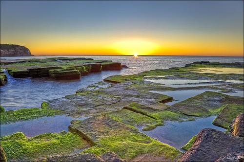 Day 239/365 (27August 09) - Turimetta Sunrise by CB 357