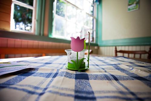 lund window public table licht daylight skåne europa europe candle sweden tulip sverige tablecloth candleholder bord raam scania zweden tafel kaars tulp ljus fönster tulpan skane tafelkleed daglicht ljusstake theelichtje waxinelichtje kaarsenhouder bordsduk yearbook2009 dagsljus