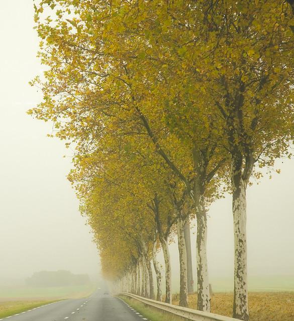 Vers Rumont, Loire, France
