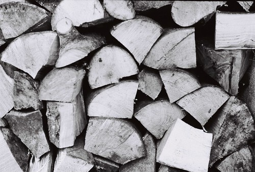 The wood pile | by Felim O