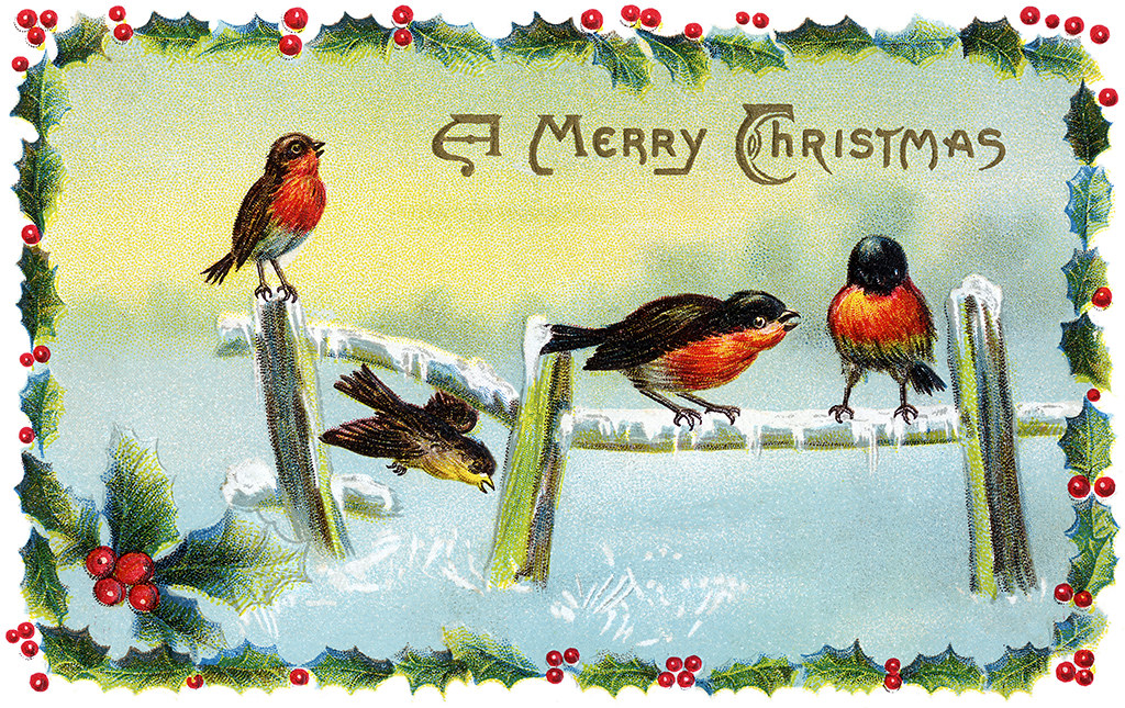Winter Song Birds - a Vintage Christmas Card Illustration ...