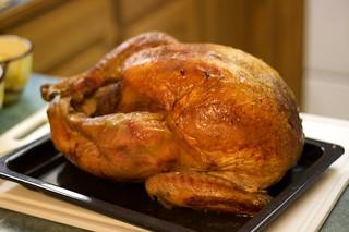 Thanksgiving Turkey   by tuchodi