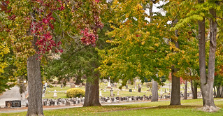Mountain View Cemetery (36 of 40) | by micurs