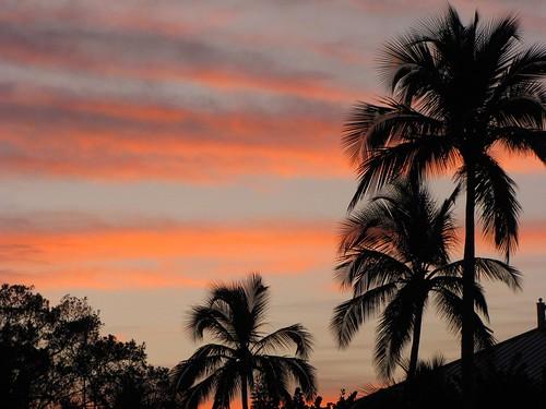 sky beach clouds sunrise palms silhouettes edtech3652010 dailyphoto10 2010365