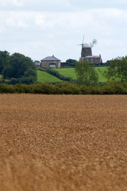 imgp9178 - Haddenham Great Windmill