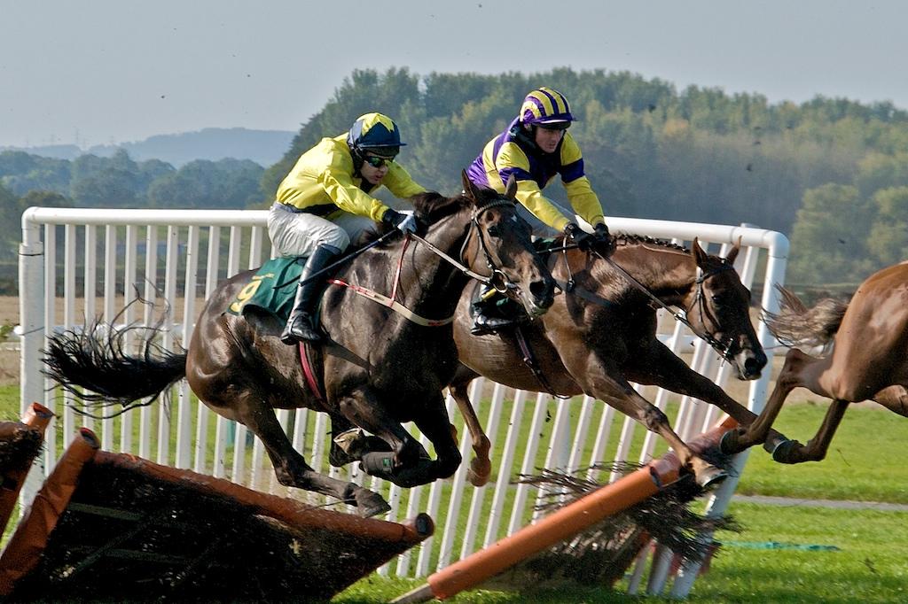 Race Horses Crash Fence | Two race horses crash through a fe… | Flickr