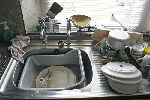 The kitchen sink   by Alan Cleaver
