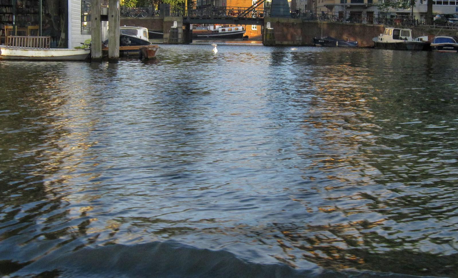 Amsterdam 146