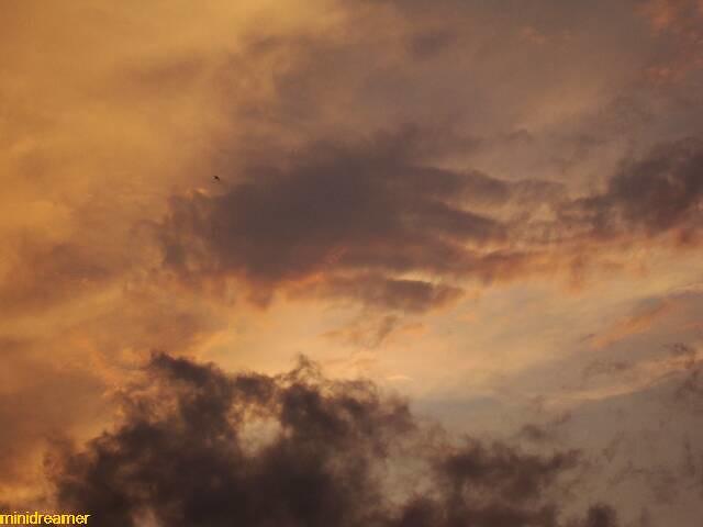hand in the sky - mano en el cielo