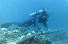 Diver Checking Underwater Protection of Cable   by The Official CTBTO Photostream