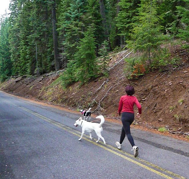 A Woman Wearing A Red Shirt And Jogging With Two Dogs In Oregon