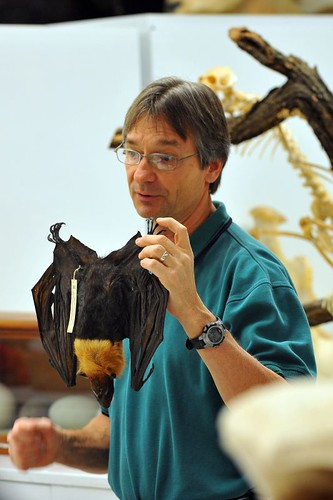 Dr. Bob Dowler shows off his bats.