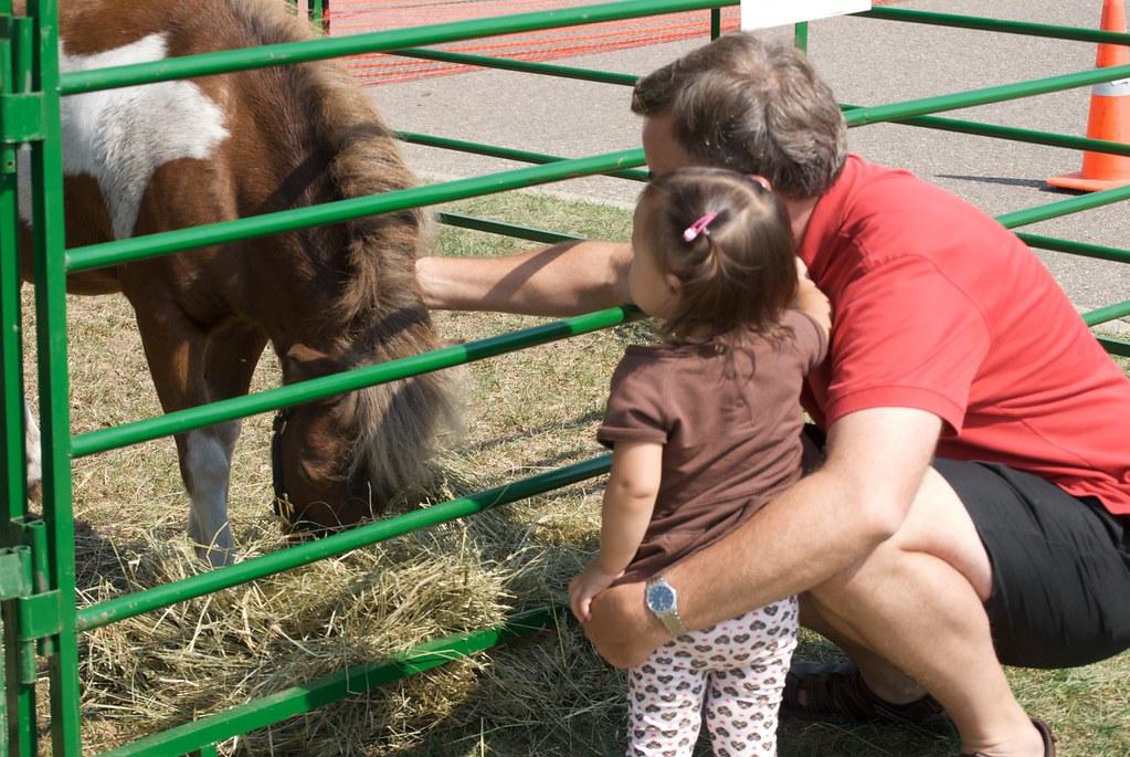 Petting Zoo at Church