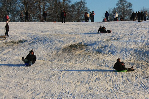 Sledging, Christchurch Park, Ipswich, 19 December 2009 | by ed_needs_a_bicycle