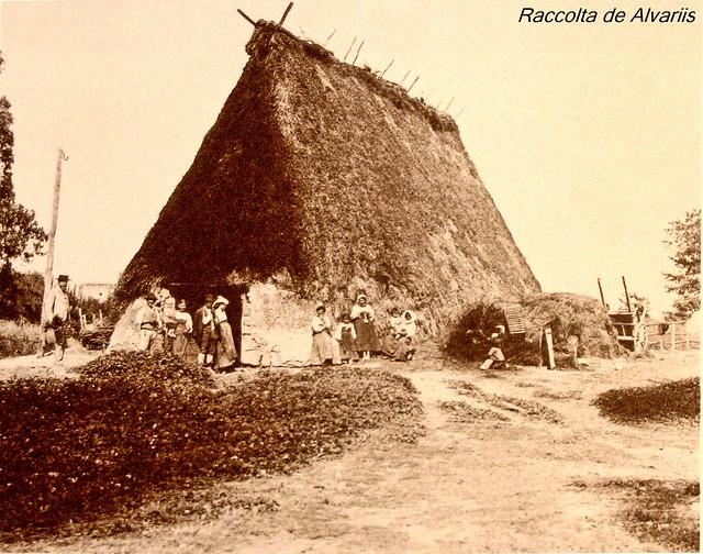 1884 ca 2011 Capanna di Contadini a Ostia
