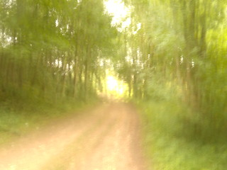 Woodland Path Hassocks to Brighton