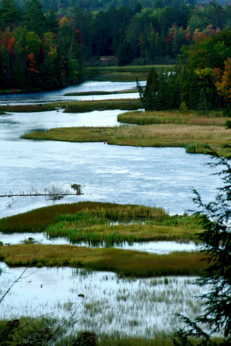 Iargo Springs Au Sauble River Oscoda 9-27-09 68 | by stevendepolo