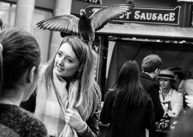 A bird in the hair