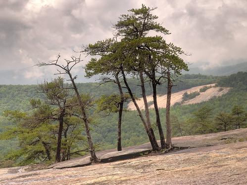 northcarolina stonemountainstatepark