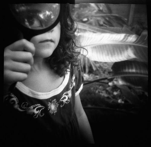 Eye Spy   by Laura Burlton - www.lauraburlton.com