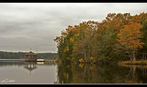 autumn lake fall landscape cloudy overcast foliage tamron manahawkin 2875 manahawkinnewjersey