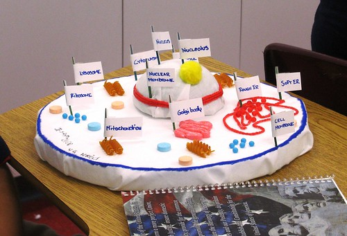 INEDIBLE CELL PROJECT | by Florida Science