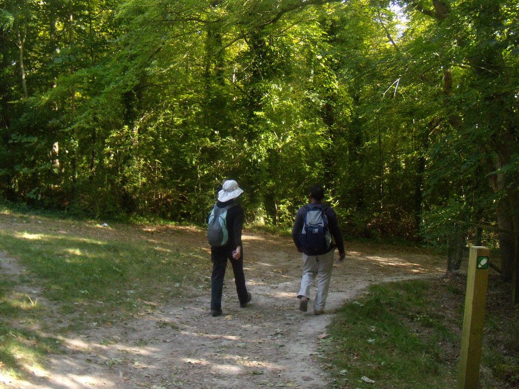 Through woods Glynde to Seaford