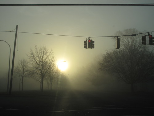morning fog sunrise stoplights dearborn foggymorning thickfog autumnsunrise leaflesstrees outerdrive dearbornmi outerdrivesummer