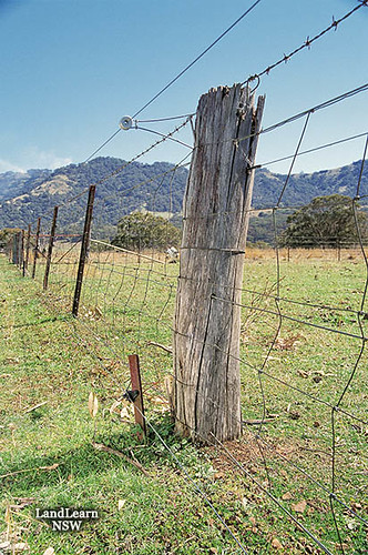 Goat fencing | Fencing for goats, minimum standard, old ring… | Flickr