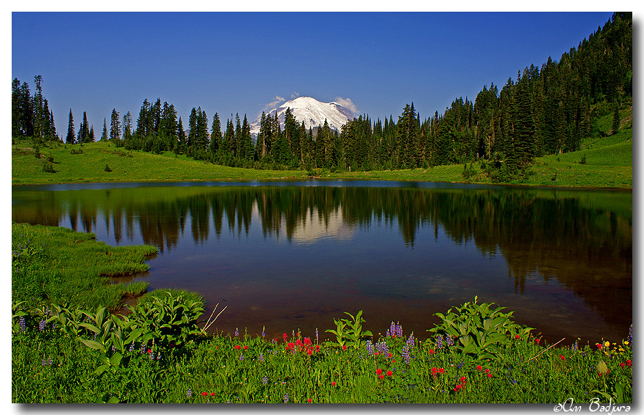 Wonderful morning at Tipsoo Lake by Ann Badjura Photography