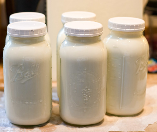 Humble Garden 2009: 2.5 gals/day milk | by nikaboyce