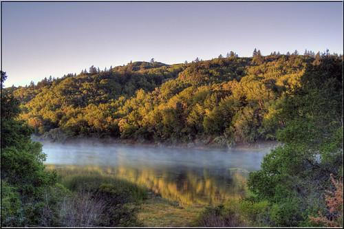 In the Misty Morning... | by Jill Clardy