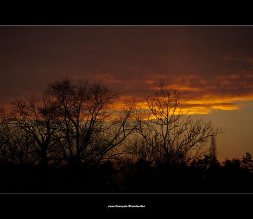 nature arbre paysages wallonie brabantwallon vr18200 nikond90 bossutgottechain theunforgettablepictures