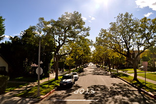 Beverly Hills | by Studio Sarah Lou