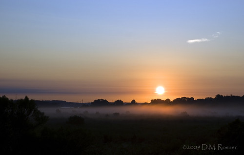 sunrise florida marsh